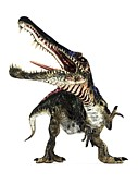 Northern Africa Metal Prints - Spinosaurus Dinosaur, Artwork Metal Print by Animate4.comscience Photo Libary