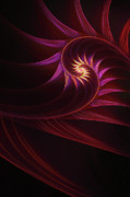 Fractal Digital Art Posters - Spira mirabilis Poster by John Edwards
