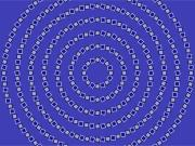 Optical Illusion Digital Art Prints - Spiral Circles Print by Michael Tompsett