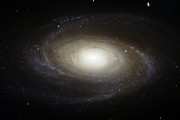 Ursa Major Prints - Spiral Galaxy M81 Print by Stocktrek Images