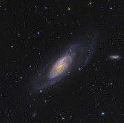 M106 Posters - Spiral Galaxy Messier 106 Poster by Ken Crawford