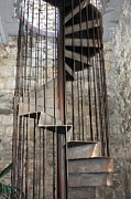 Staircase Originals - Spiral Staircase by Sophie Vigneault