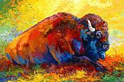 Wildlife Painting Metal Prints - Spirit Brother - Bison Metal Print by Marion Rose