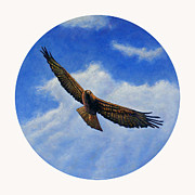 Eagle Paintings - Spirit in the Wind by Brian  Commerford