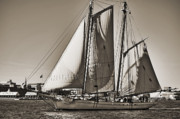 Historic Schooner Digital Art Posters - Spirit of South Carolina Schooner Sailboat Sepia Toned Poster by Dustin K Ryan