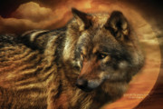 Wolf Moon Posters - Spirit Of The Golden Moon Poster by Carol Cavalaris