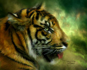 The Tiger Mixed Media Posters - Spirit Of the Tiger Poster by Carol Cavalaris
