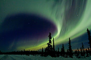 Northern Lights Prints - Spirits Flight Print by Ed Boudreau