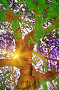 Bodhi Tree Art - Spiritual by Tarun  Sehdev