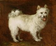 White Puppy Posters - Spitz Dog Poster by Thomas Gainsborough