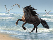 Friesian Posters - Splash Dance Poster by Dee Dee Murry