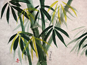 Alethea McKee - Splendid Bamboo