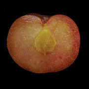 Ripe Photos - Split Plum  by Michael Peychich