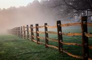 Williamsburg Prints - Split-rail Fence In The Early Morning Print by Richard Nowitz