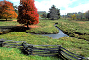 Split Rail Fence Photos - Split rail fence in Virginia by Carl Purcell