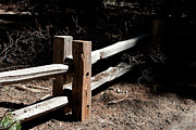 Split Rail Fence Prints - Split Rail Sun Spot Print by Lorraine Devon Wilke