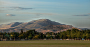 Baseball Fields Metal Prints - Sport Complex and The Butte Metal Print by Robert Bales
