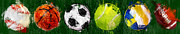 Sports Art Digital Art Posters - Sports Balls Abstract Poster by David G Paul