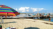 Vineyard Haven Prints - Spot at the Dock Print by Barbara McDevitt