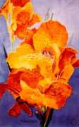 Canna Painting Framed Prints - Spotted Canna Framed Print by M Diane Bonaparte