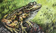 Creature Pastels Framed Prints - Spotted Toad Framed Print by Emily Michaud