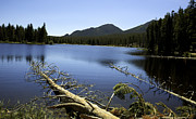 Sprague Lake Rocky Mountain National Park Print by Gary Batha