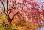 Cherry Prints - Spring - Sakura - A Beautiful Spring day  Print by Mike Savad
