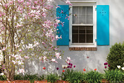 Magnolia Prints - Spring - Spring Window Print by Mike Savad