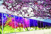 Spring Architectural Abstract Print by Steve Ohlsen