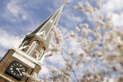 Charlotte Nc Photography Posters - Spring at Belmont Abbey College Poster by Patrick Schneider