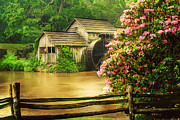 Grist Mill Art - Spring at the Mill by Darren Fisher