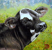 Black Angus Framed Prints - Spring Baby Framed Print by Bobbie Deuell