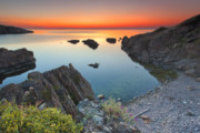 Dawn Prints - Spring Bay Print by Evgeni Dinev