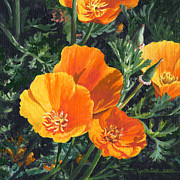 California Poppy Paintings - Spring Beauties by Lynette Cook