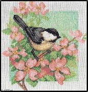 Tree Blossoms Prints - Spring Birds - Black-Capped Chickadee Print by J McCombie