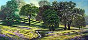 Oaks Painting Framed Prints - Spring Bloom Table Mountain Framed Print by Frank Wilson