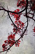 Spring Bloosom In Maldives. Flamboyant Tree II. Japanese Style Print by Jenny Rainbow