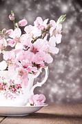 Vintage Teacup Prints - Spring Blossom Print by Christopher and Amanda Elwell