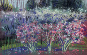 Spring Pastels Originals - Spring Blossoms by Donald Maier