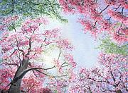 Tree Blossoms Paintings - Spring Blossoms by Lynn Quinn
