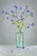 Spring Blues Print by Jacky Parker