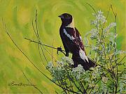 Spring Bird Paintings - Spring Bobolink by Bruce Morrison