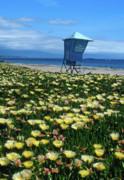 Kathy Yates - Spring Break Santa Barbara