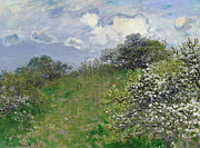 Hillside Posters - Spring Poster by Claude Monet