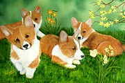 Puppies Framed Prints - Spring Corgis Framed Print by Debbie LaFrance