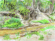 Tree Roots Pastels Originals - Spring Creek during Texas drought 01 by TD Wilson