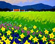 Cottage Print Paintings - Spring Daffs Ireland by John  Nolan