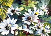 Mindy Newman Drawings - Spring Daisies by Mindy Newman