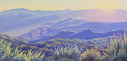 Southern California Paintings - Spring Evening Topanga Canyon by Elena Roche