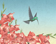 Floral Hummingbird Posters - Spring Flight Poster by Cheryl Young